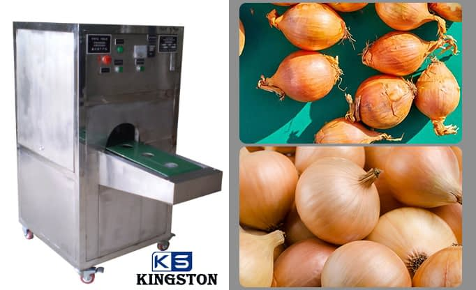onion tail and root cutting machine