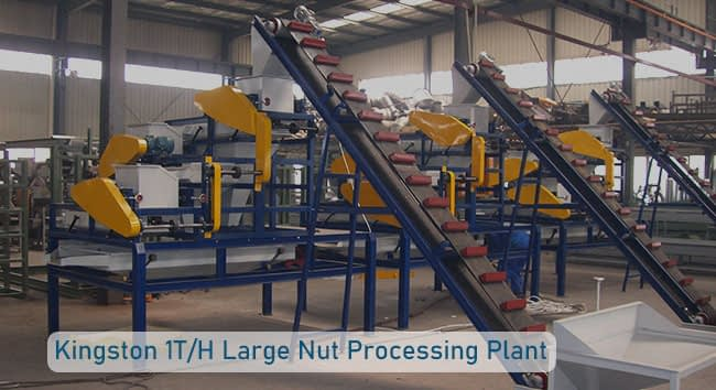 large nut cracking and separating line
