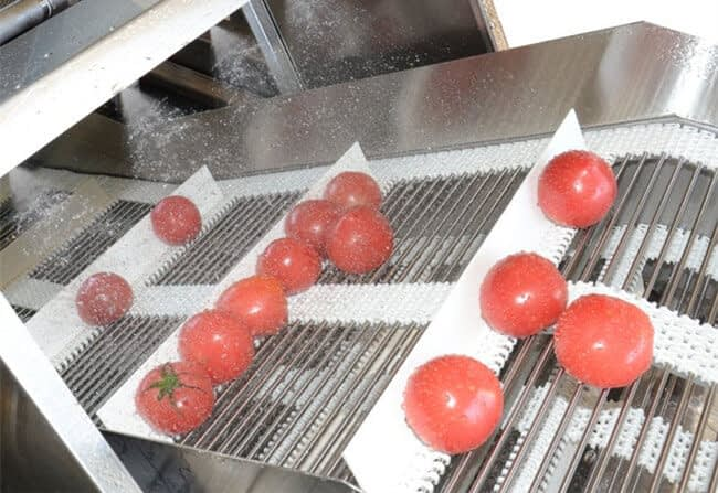 pretreatment of fruit vegetable for juice production