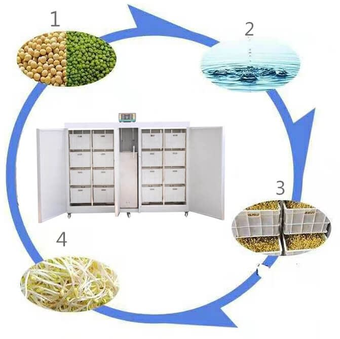 how to make sprouts in sprouts machine